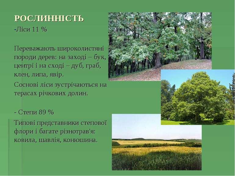 РОСЛИННІСТЬ Ліси 11 % Переважають широколистяні породи дерев: на заході – бук...