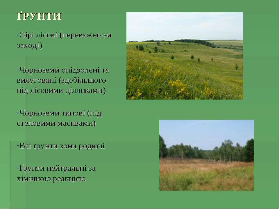 ҐРУНТИ Сірі лісові (переважно на заході) Чорноземи опідзолені та вилуговані (...