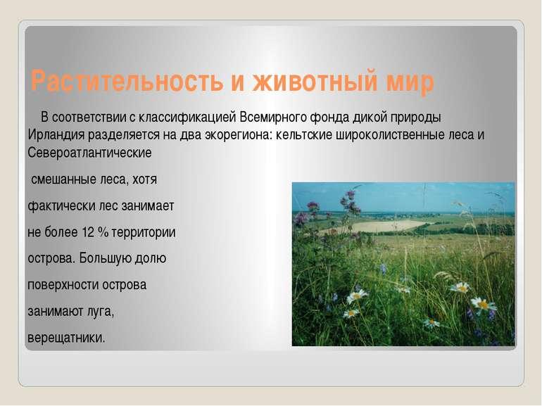 Растительность и животный мир В соответствии с классификацией Всемирного фонд...