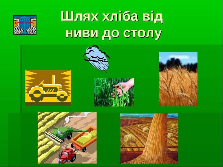 Шлях хліба від ниви до столу