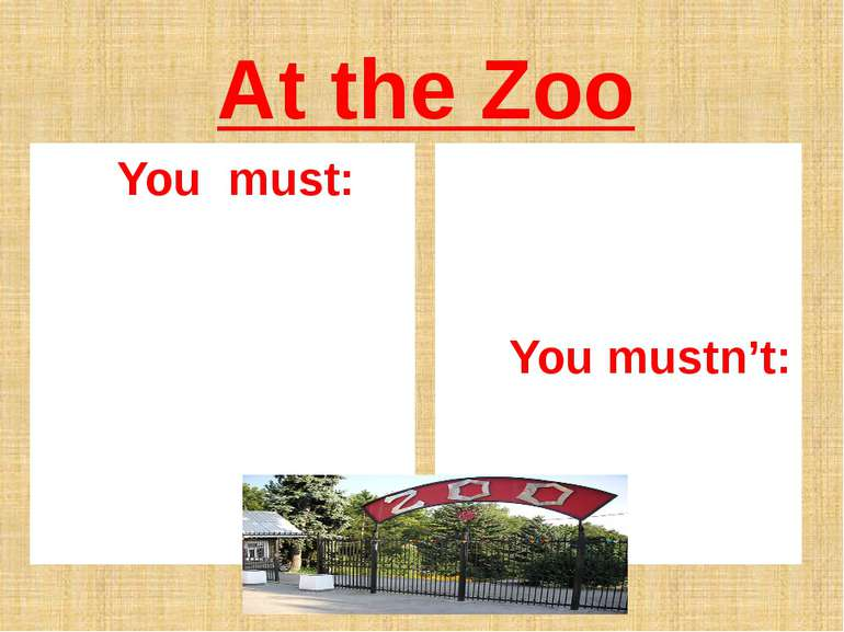At the Zoo You must: You mustn't: