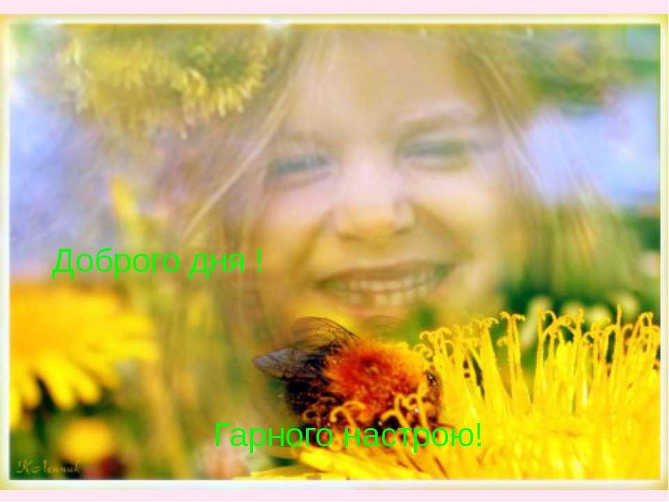 Доброго дня ! Гарного настрою!