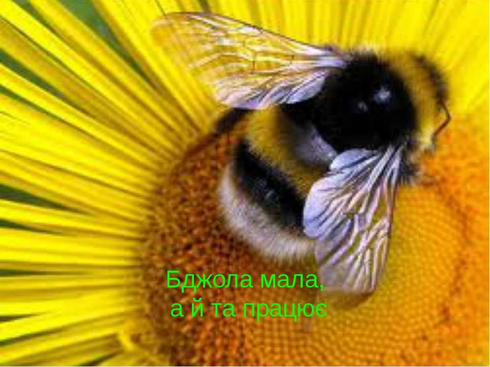 Бджола мала, а й та працює