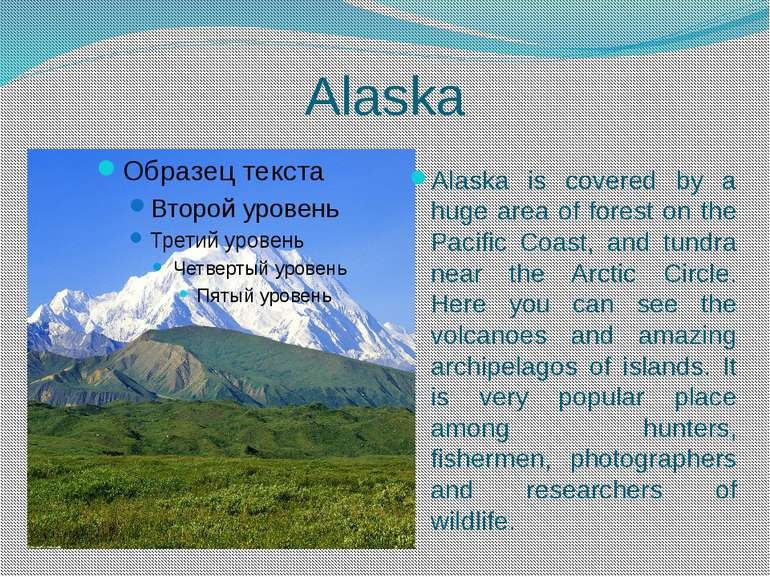 Alaska Alaska is covered by a huge area of forest on the Pacific Coast, and t...