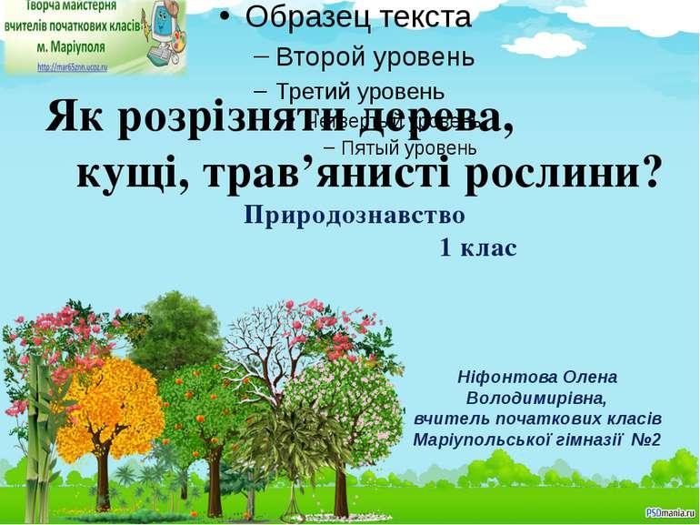 Як розрізняти дерева, кущі, трав'янисті рослини? Природознавство 1 клас Ніфон...