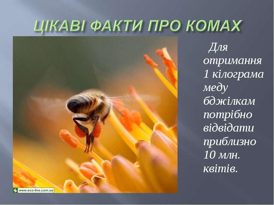 Для отримання 1 кілограма меду бджілкам потрібно відвідати приблизно 10млн. ...