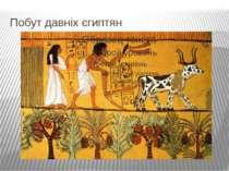 Побут давніх єгиптян