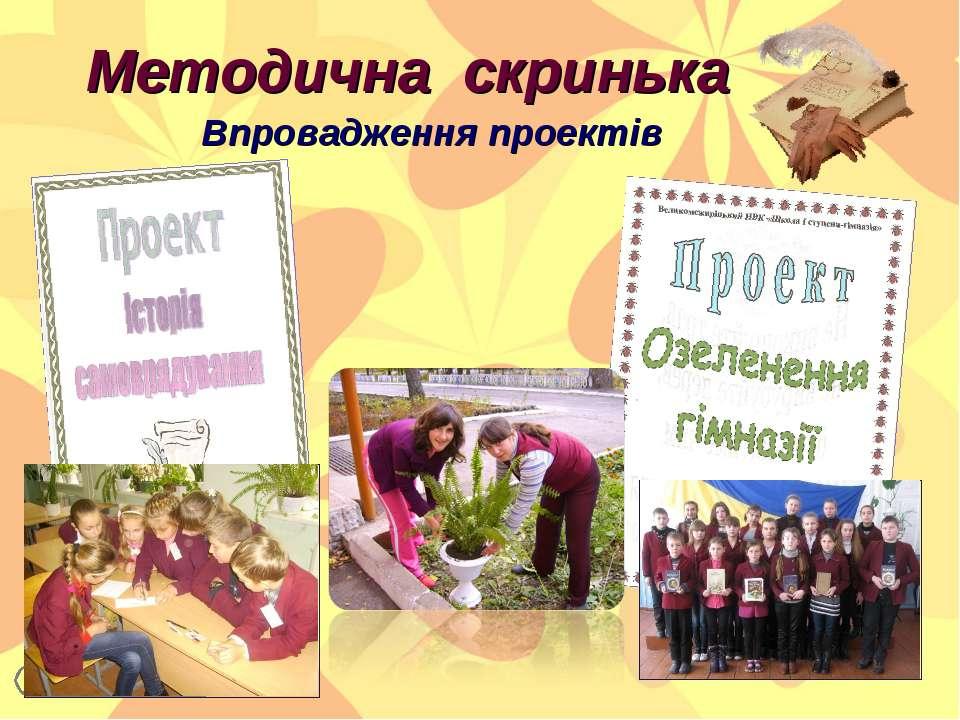 Методична скринька Впровадження проектів Консевич Л.В. 2013 р. *