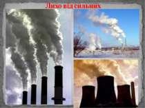 Лихо від сильних Цікава екологічна інформація: Людині потрібно 960 л кисню на...