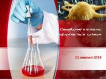 03 квітня 2014 Стовбурові клітини. Диференціація клітин
