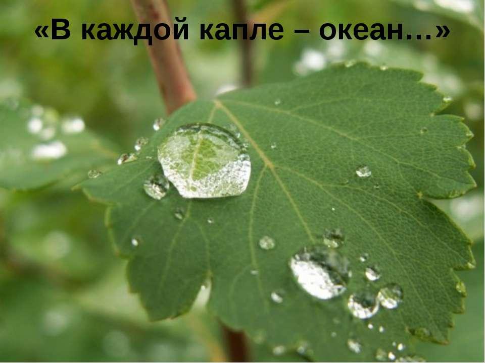 «В каждой капле – океан…» FokinaLida.75@mail.ru