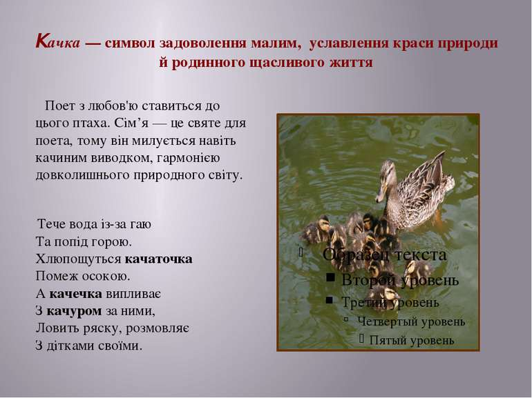 Качка— символ задоволення малим, уславлення краси природи й родинного щаслив...