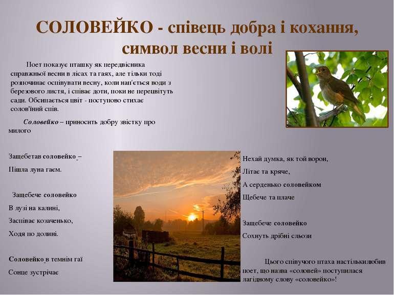 СОЛОВЕЙКО - співець добра і кохання, символ весни і волі Поет показує пташку ...