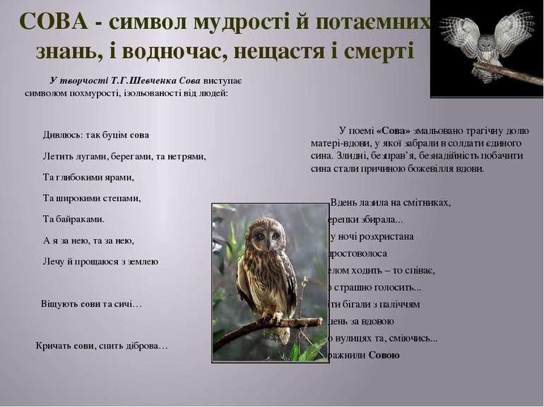 СОВА - символ мудрості й потаємних знань, і водночас, нещастя і смерті У твор...