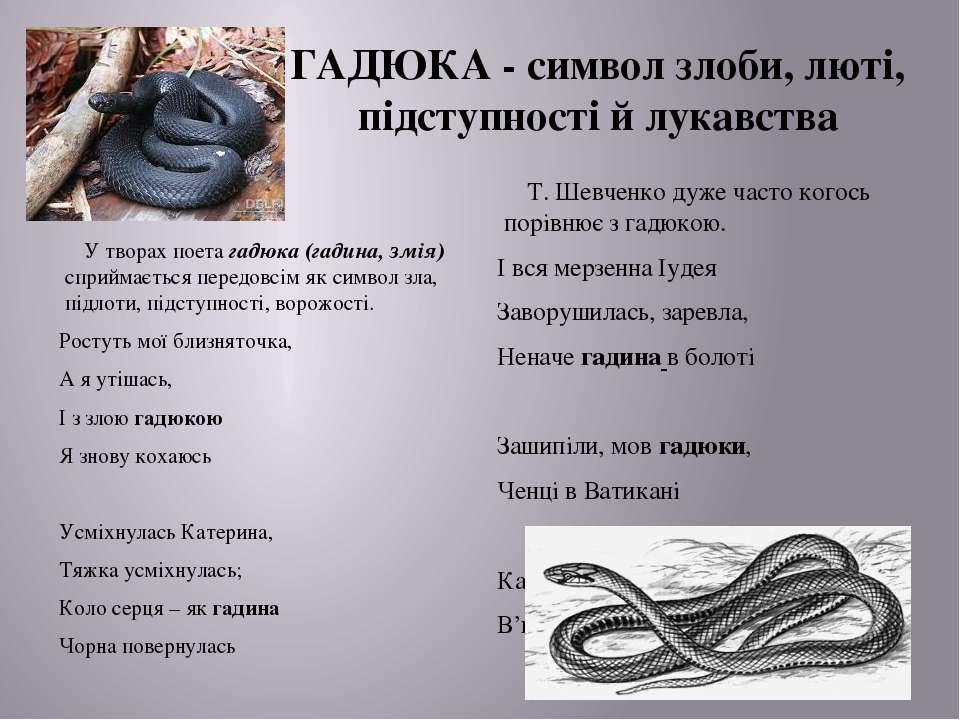 ГАДЮКА - символ злоби, люті, підступності й лукавства У творах поета гадюка (...