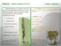 Тополя - символ дерева життя, добра і правди Найулюбленішим рослинним символо...
