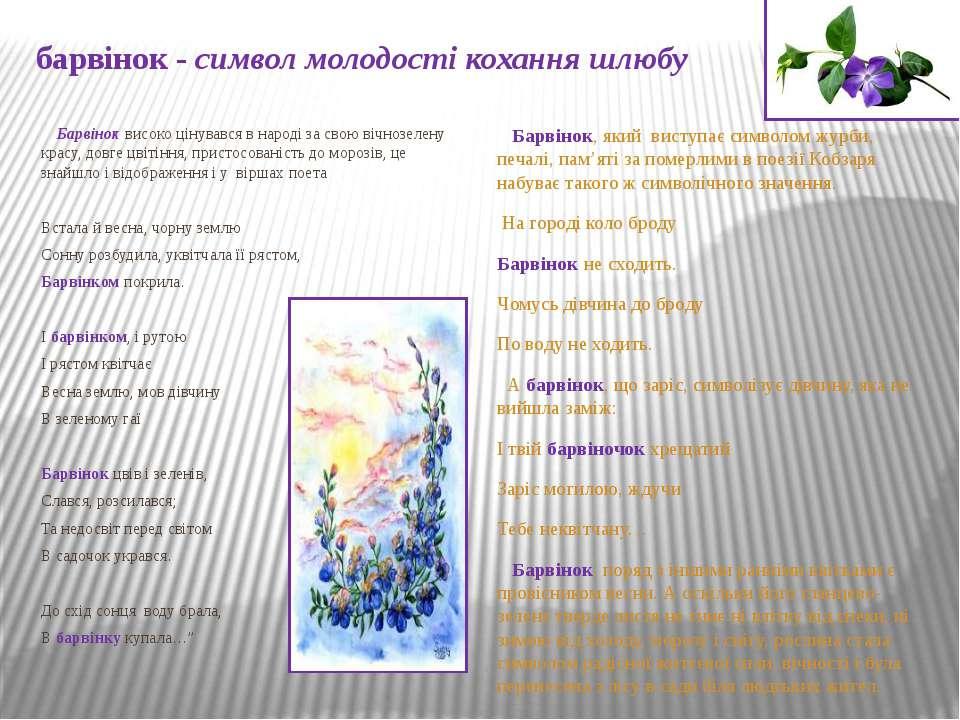 барвінок - символ молодості кохання шлюбу Барвінок високо цінувався в народі ...
