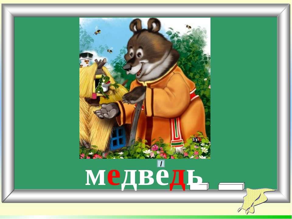 медведь /