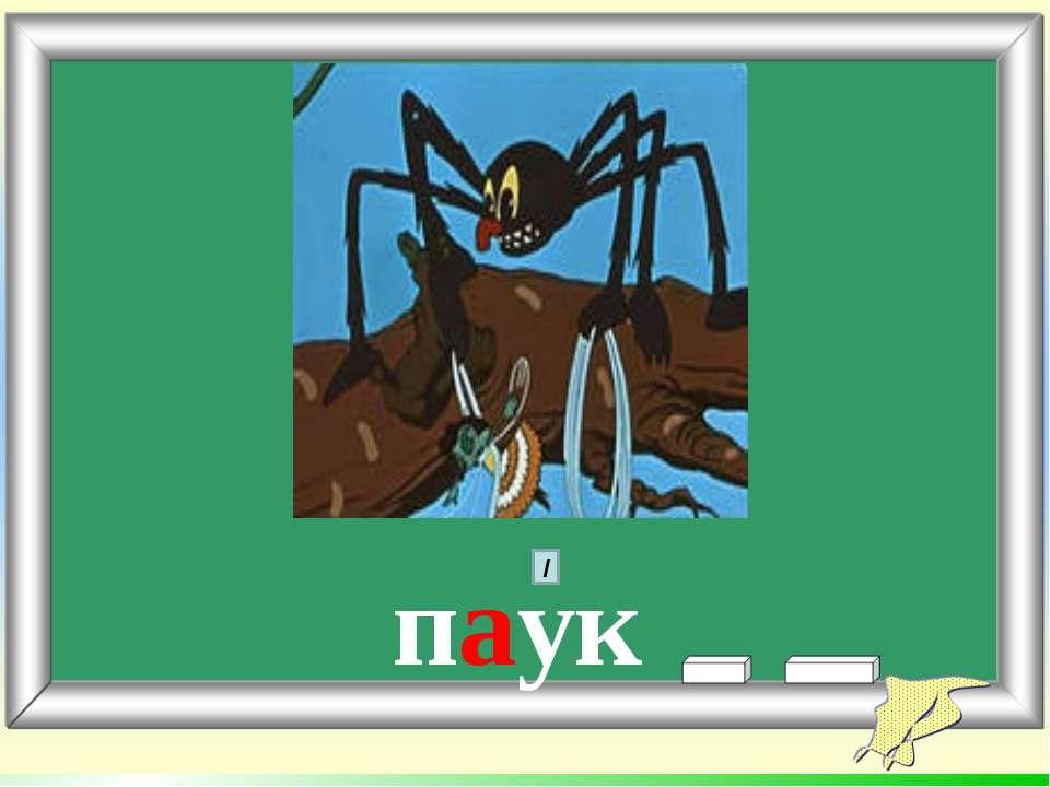 паук /