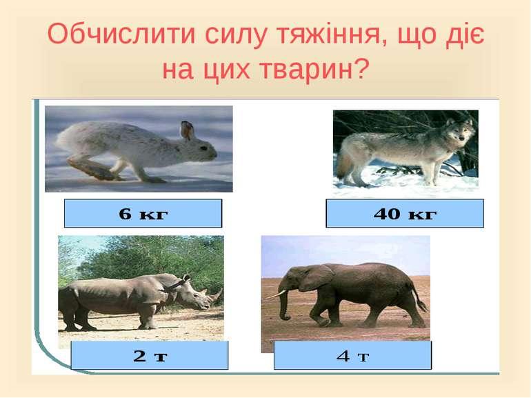 Обчислити силу тяжіння, що діє на цих тварин?