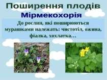 До рослин, які поширюються мурашками належать: чистотіл, ожина, фіалка, хохла...