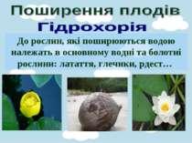 До рослин, які поширюються водою належать в основному водні та болотні рослин...