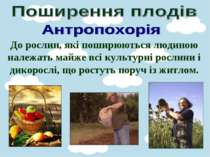 До рослин, які поширюються людиною належать майже всі культурні рослини і дик...