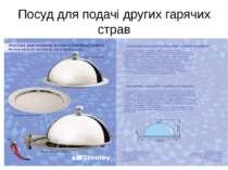 Посуд для подачі других гарячих страв