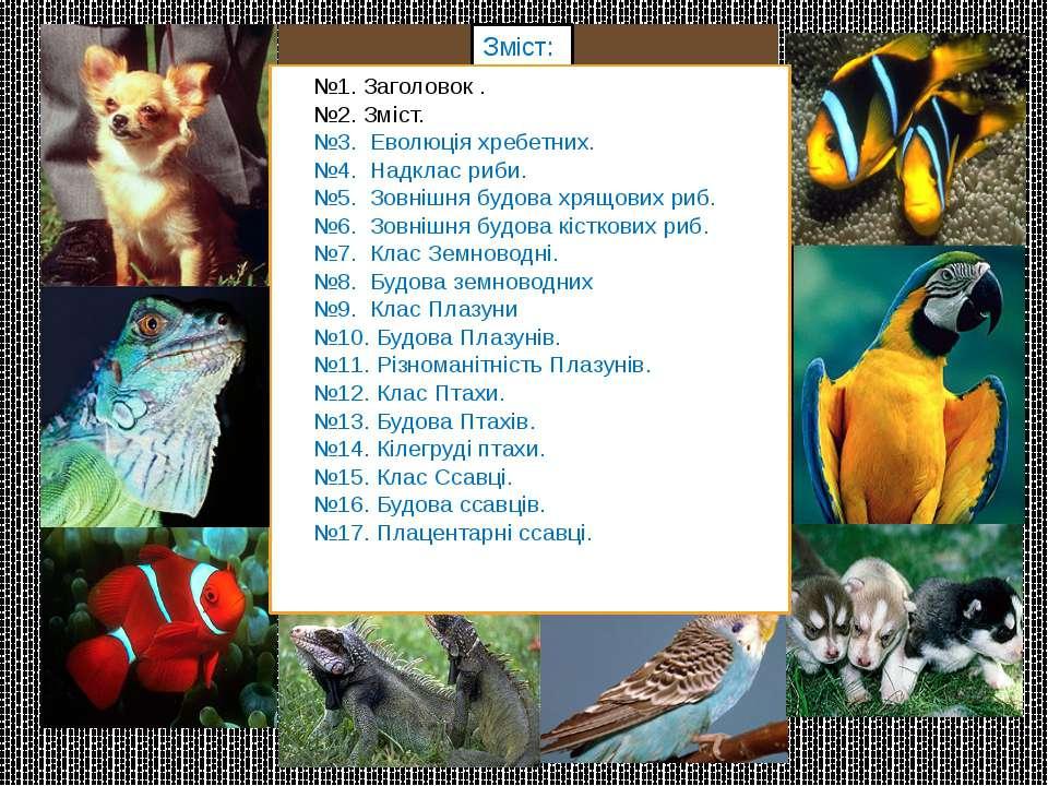Еволюція хребетних тварин. риби земноводні птахи ссавці плазуни хрящові кістк...