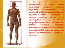 В організмі людей, що споживають з їжею багато насичених жирних кислот, церам...