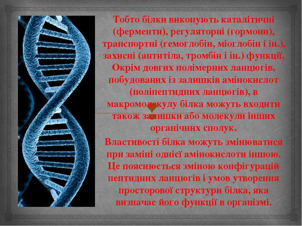 Тобто білки виконують каталітичні (ферменти), регуляторні (гормони), транспор...