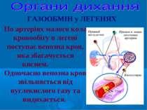 По артеріях малого кола кровообігу в легені поступає венозна кров, яка збагач...