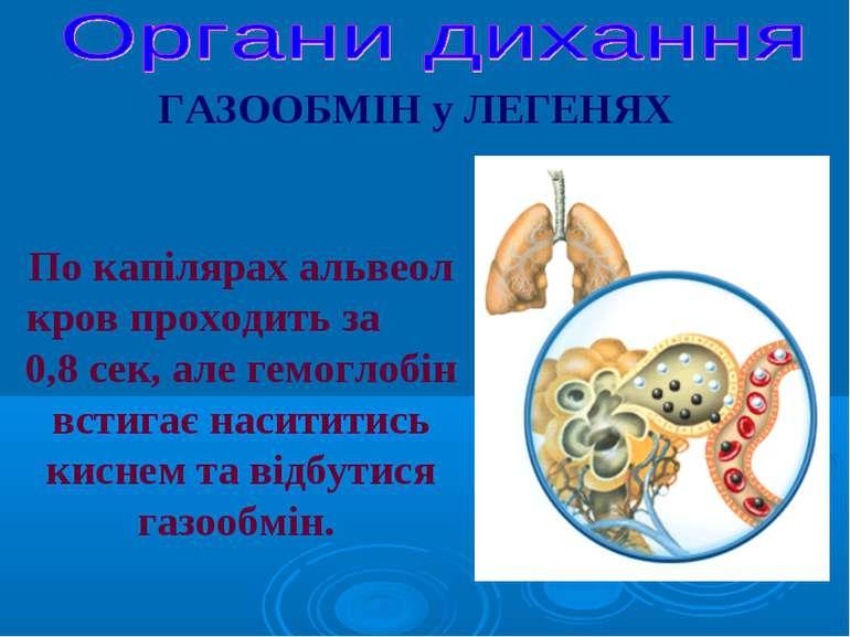 По капілярах альвеол кров проходить за 0,8 сек, але гемоглобін встигає насити...