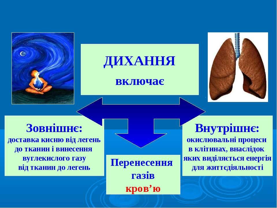 ДИХАННЯ включає Зовнішнє: доставка кисню від легень до тканин і винесення вуг...