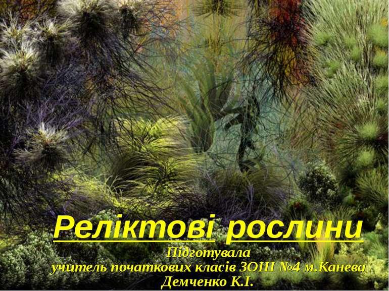 Реліктові рослини Підготувала учитель початкових класів ЗОШ №4 м.Канева Демче...