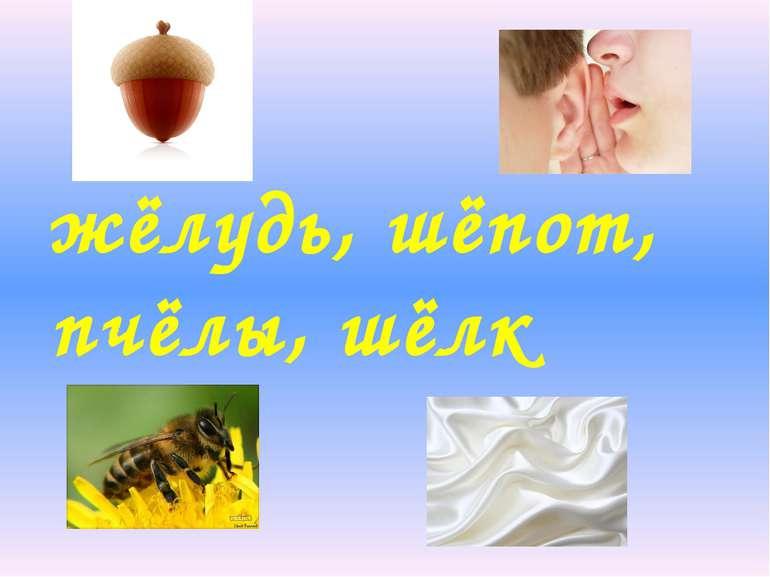 жёлудь, шёпот, пчёлы, шёлк