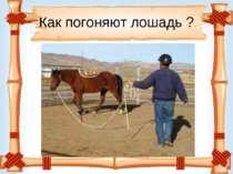 Как погоняют лошадь ?