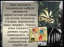 Нині значного поширення набуло вживання наркотичних речовин на основі конопел...