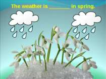 The weather is _______ in spring.