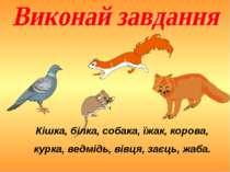 Кішка, білка, собака, їжак, корова, курка, ведмідь, вівця, заєць, жаба.