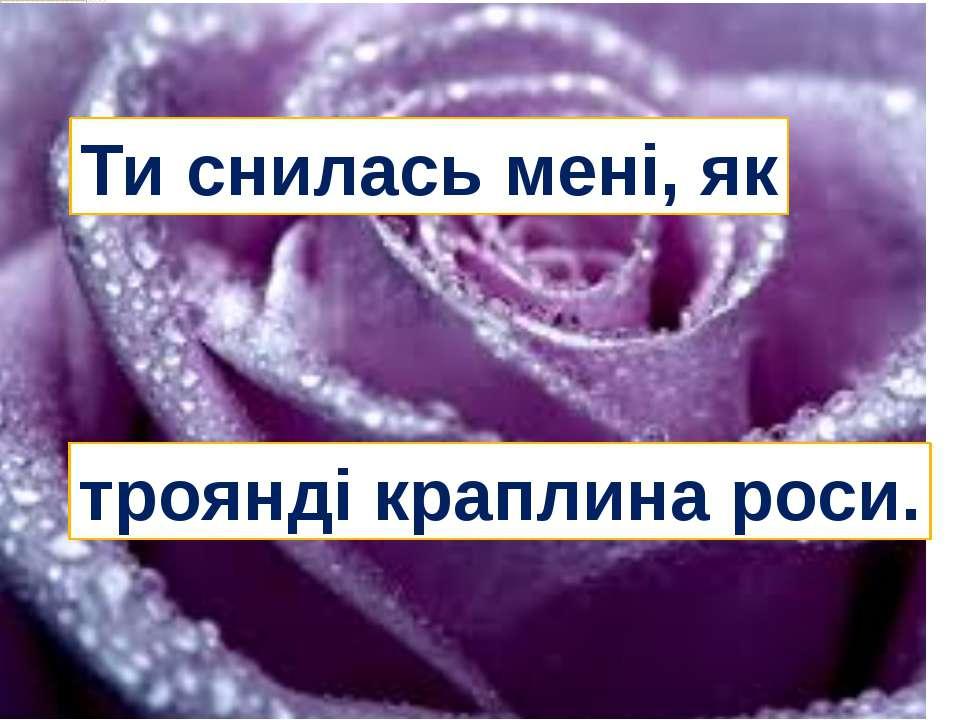 Ти снилась мені, як троянді краплина роси.