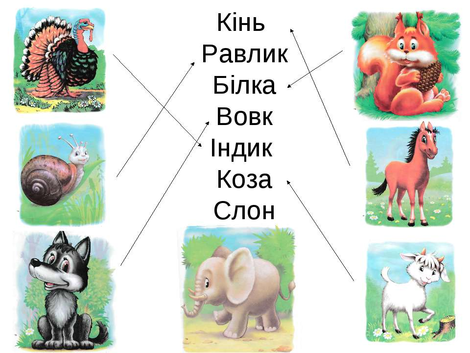 Кінь Равлик Білка Вовк Індик Коза Слон
