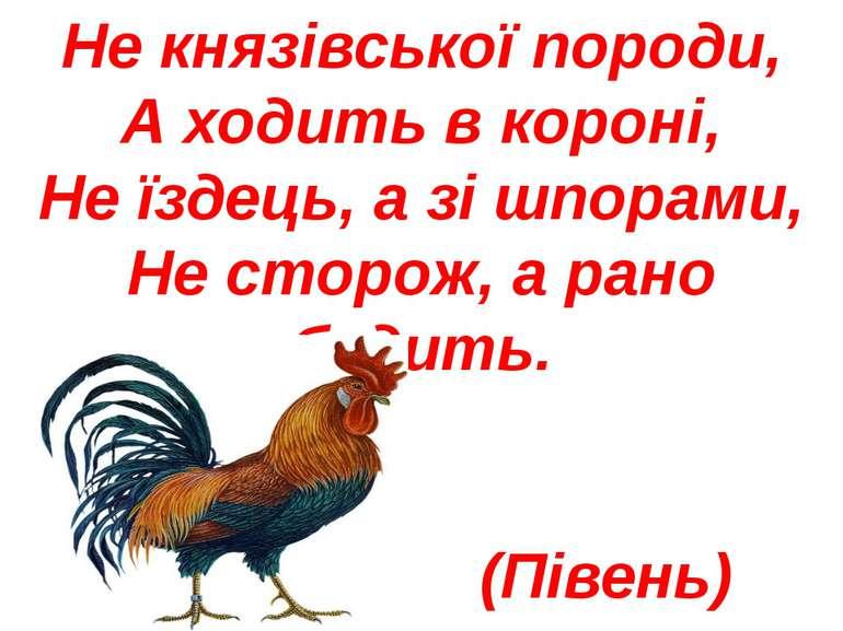Не князівської породи, А ходить в короні, Не їздець, а зі шпорами, Не сторож,...