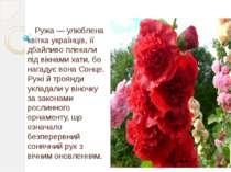 Ружа — улюблена квітка українців, її дбайливо плекали під вікнами хати, бо на...
