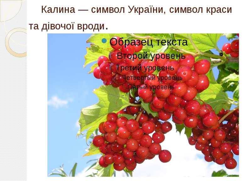 Калина — символ України, символ краси та дівочої вроди.