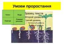 Умови проростання Тепло Вода Повітря Поживні речовин