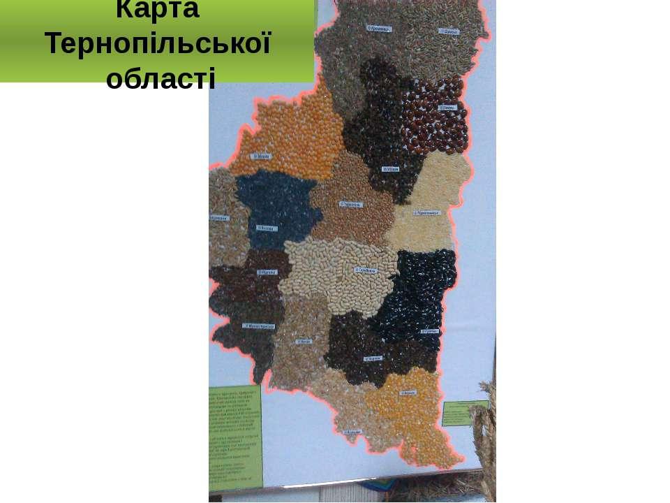 Карта Тернопільської області