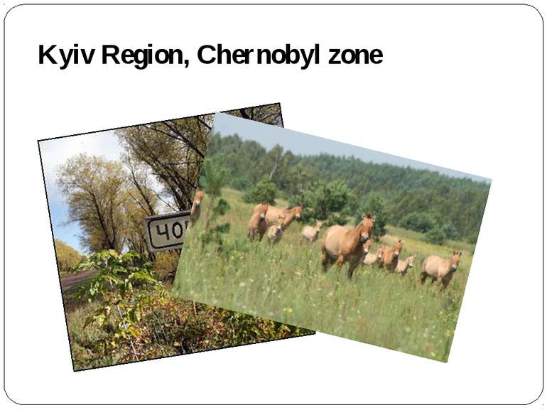 Kyiv Region, Chernobyl zone