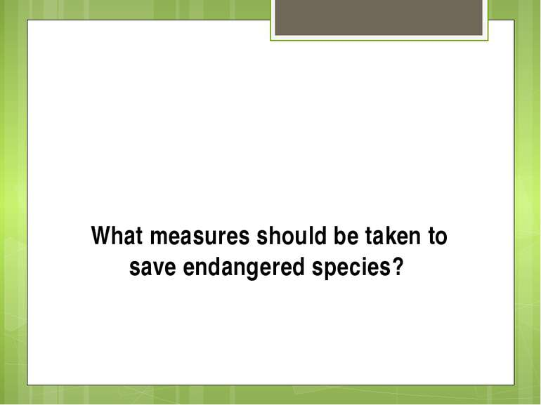 What measures should be taken to save endangered species?