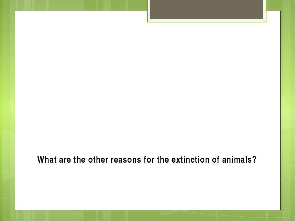 What are the other reasons for the extinction of animals?
